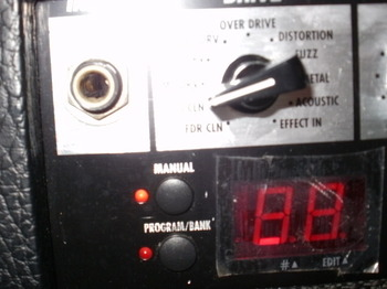 PB220246.JPG
