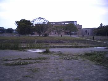 PICT0048.JPG