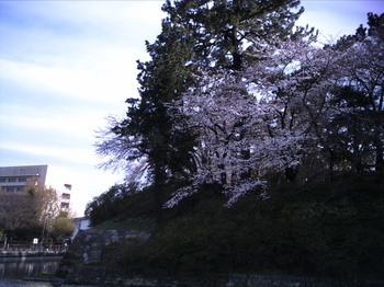PICT0657.JPG